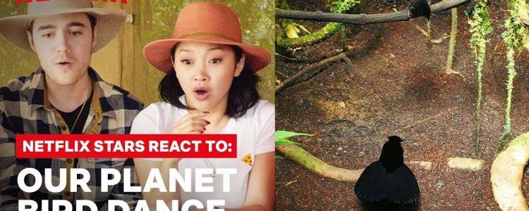 Lana Condor + Netflix Stars React to Dancing Birds with Our Planet